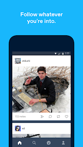 screenshot of Tumblr version Varies with device