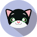 What cat breed are you? Test